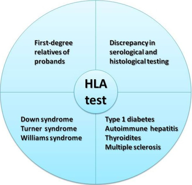 HLA Testing graphic